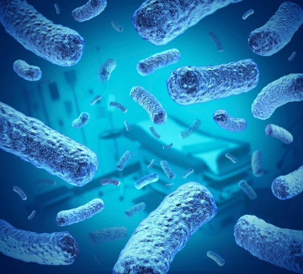 water-bacteria