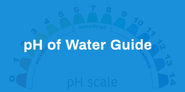 pH of Water Guide
